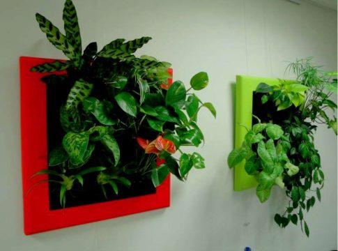 décoration florale facile